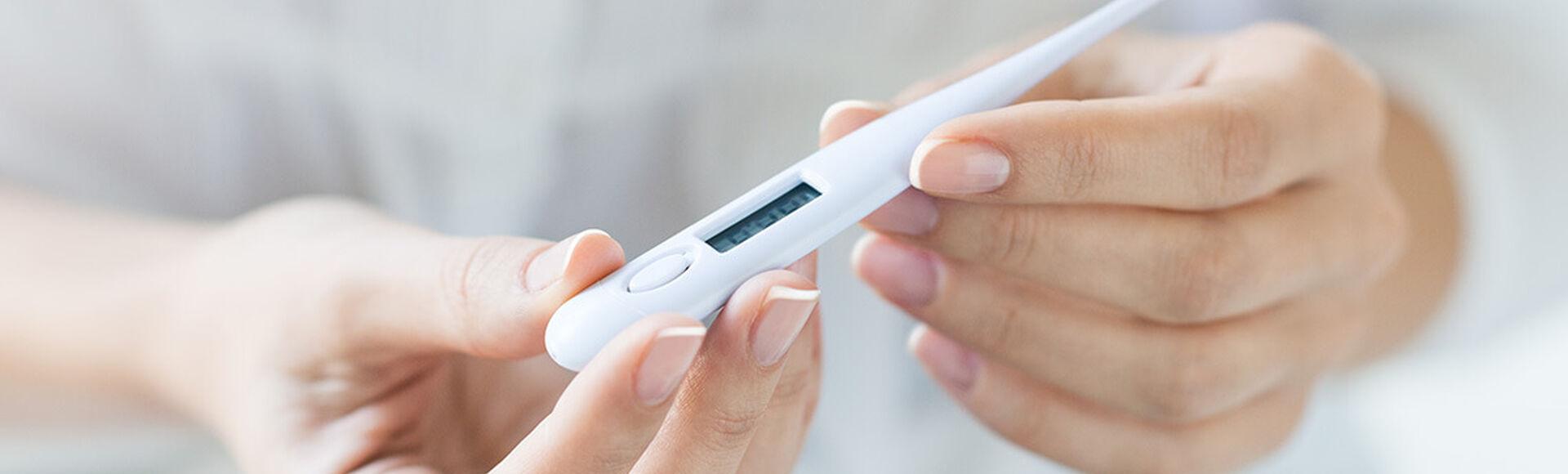 O feio está no estágio de ovulação